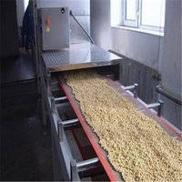 Continuous Nut Roasting Machine