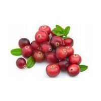 Cranberry Extract Oral