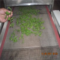High Efficiency Microwave Drying Machine/Rosemary Leaf Dryer Sterilizer