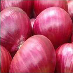Organic Onion