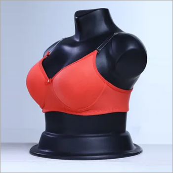 Ladies Padded Bra