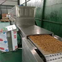 Continuous Microwave Rice Sterilizing Machine