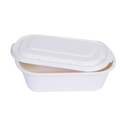 Bagasse Table Ware