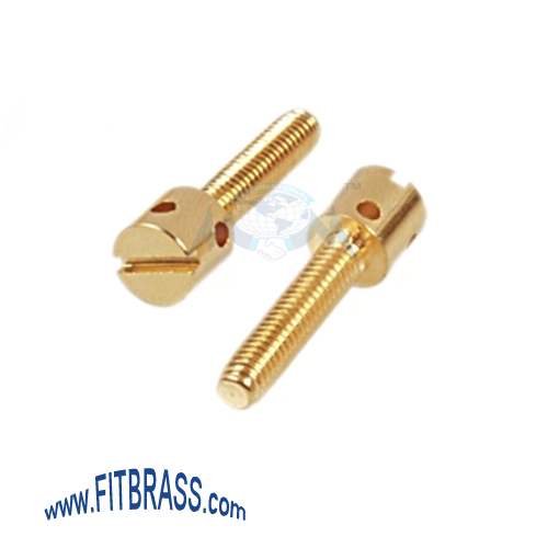 Brass Sealing Screws