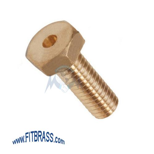 Brass Unidirectional Screws
