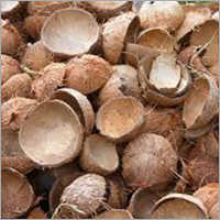 Natural Coconut Shell