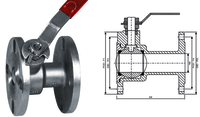 S.S. Ball type Flush Bottem Valve
