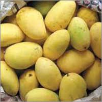 Riped Mango