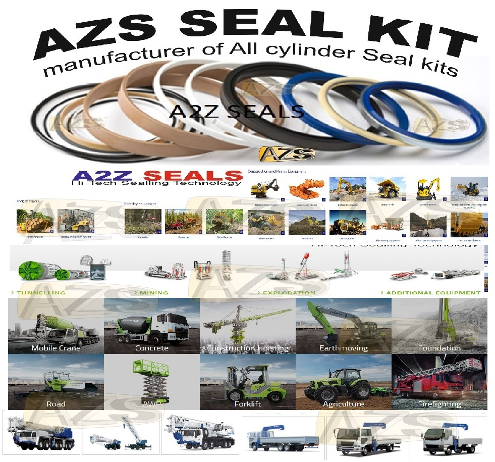 Backhoe  Seal Kit, Oil Seals