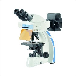 Bench-Top Fluorescence Microscope