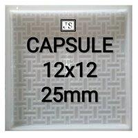 Capsule Silicone Plastic Paver Mould