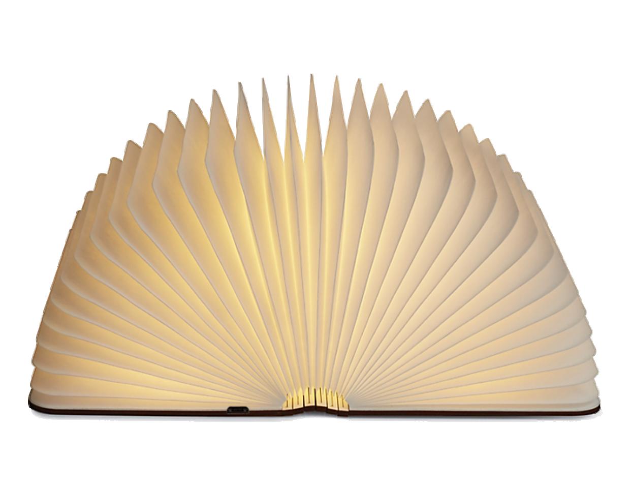 Book Lamp (X1309)