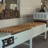 Horizontal Microwave Belt Dryer for Paper Core