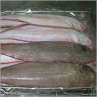 Frozen Sole Fish Whole