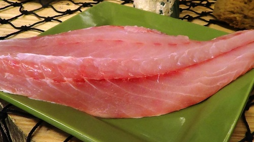Frozen Corvina Fish Fillet