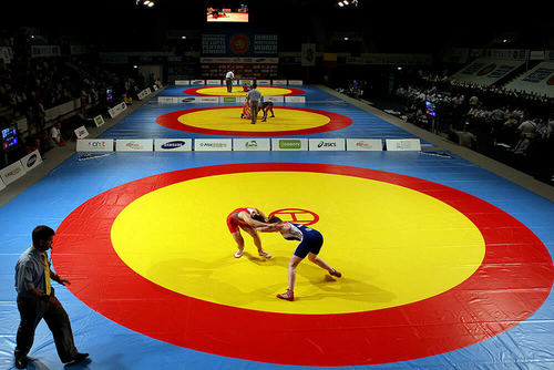 Sports Wrestling Mats and Judo Mats