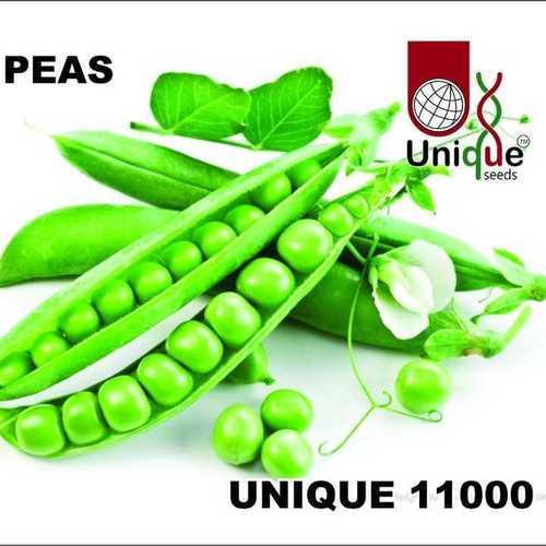 Unique 11000
