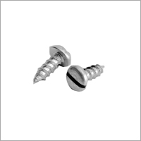 Pan Slotted ST Screw
