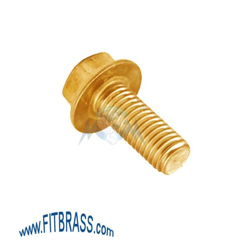 Brass Flange Bolts