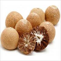 Indian Betel Nut
