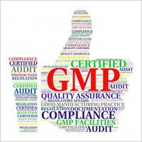 GMP Audits Service