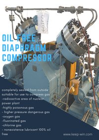 2.5Nm3/min discharge pressure 250bar CNG Natural Gas Compressor Price V type Diaphragm Compressor