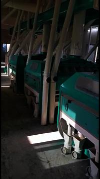 Roller Flour Mill Plant