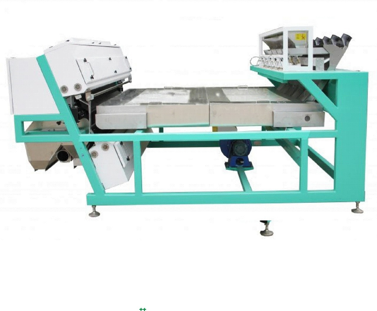 Dry Grapes Color Sorter