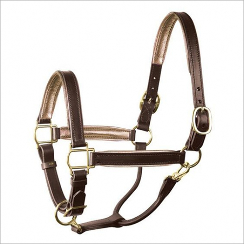 Horse Brown Leather Halter