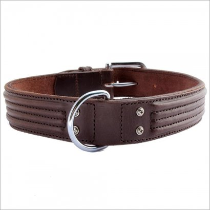 Dog Leather Collar Application: Cats