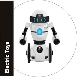 Electric Toys Battery