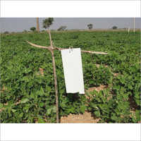 Agricultural White Sticky Insect Trap