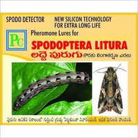 Pheromone Lure For Spodoptera Litura