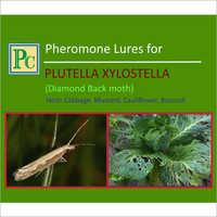 Pheromone Lures For Plutella Xylostella