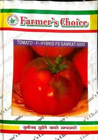 tomato seed