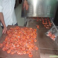Tunnel Conveyor Microwave Shrimp Dryer