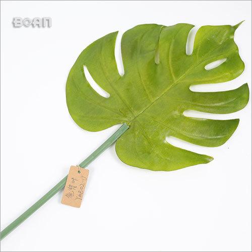 Indoor or Outdoor Leaf