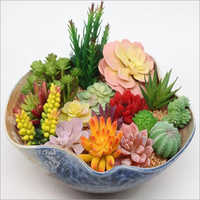Siulation Meaty Plant Artificial Succulent Flower Plants