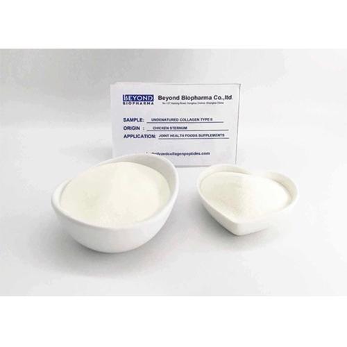 Native Collagen Powder Type II