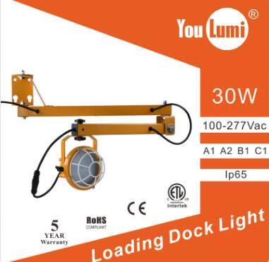 LED Loading Dock Light 30W 110LM/W 360 °