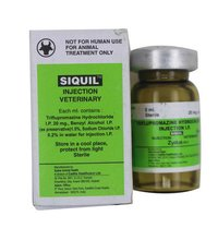 SIQUIL 5ML INJECTION