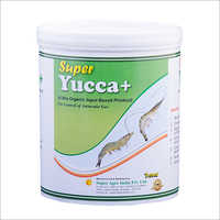 YUCCA Plant Extract