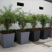 Square FRP Planter