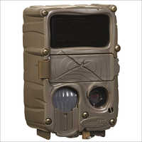 Camera Trap Black Flash