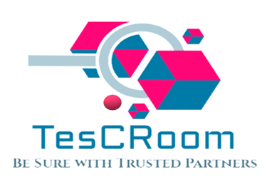 TesCRoom Clean Room Validation