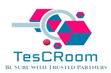 TesCRoom Clean Room Validation