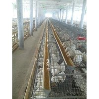Poultry Grower Cage