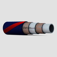 Steam/Air Hose