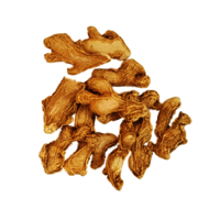 Best Dry Ginger Spices