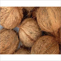 Indian Semi Husked Coconut